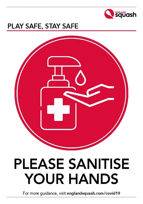 Please sanitise your hands poster